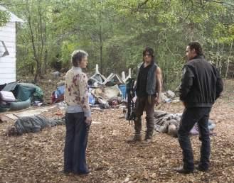 Walking Dead 8